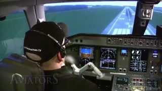 Download Can a private pilot land an airliner? (FREEview 105) Video