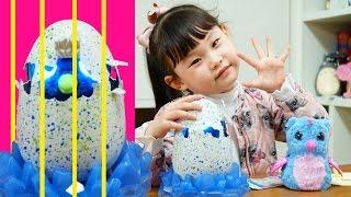 Download [다큐5일]라임의 해치멀스 알 부화시키기❤︎ 뽀로로와 타요 서프라이즈에그 장난감 놀이 LimeTube & Toy 라임튜브 Video