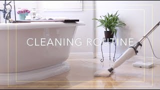 Download My Weekly Cleaning Routine + Cleaning Products I Love Video