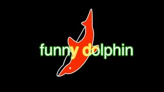 Download funny dolphin Video
