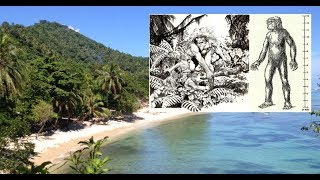 Download Does a Giant Race Still Exist in the Solomon Islands? Video