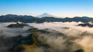 Download [ 4K UHD ]絶景空撮:雲海と富士山(清水吉原)Mt.FUJI over the Sea of clouds:Aerial Drone shot(shot on Mavic 2 Pro) Video