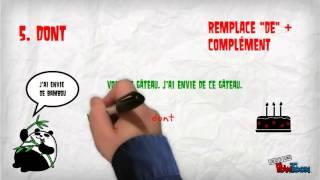 Download Quel pronom relatif? Video
