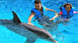 Download Kids Dolphin Ride - Swimming With Dolphins Family Fun Video In Mexico | Toys AndMe Video