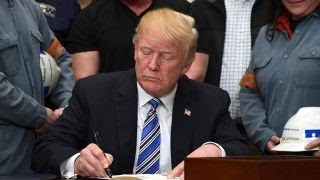 Download Trump reportedly to sign executive order ending birthright citizenship Video