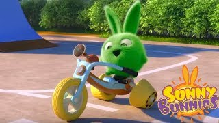 Download Cartoons for Children | Sunny Bunnies - HOPPER'S BIKE | SUNNY BUNNIES | Funny Cartoons For Children Video