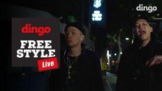 Download [딩고프리스타일 라이브] 팔로알토 - 시차적응(feat.루피) Video
