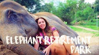 Download DONT ride Elephants DO Elephant RETIREMENT park - Chiang Mai Video