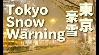 Download Tokyo Snow 大雪の東京 東京観光 冬の東京 Shibuya Crossing Omotesando Harajuku Tokyo Trip Travel Video