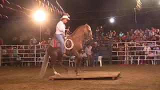Download CONCURSO DE CABALLOS 2018 EXPO-FERIA REGIONAL PALMAR CHICO 2018. Video