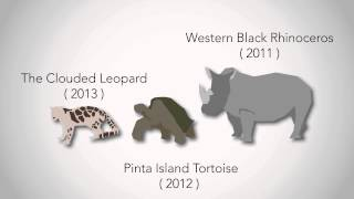 Download Biodiversity loss/extinction rates Video