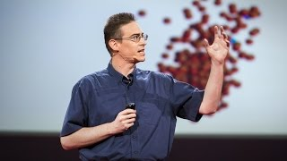 Download Rob Knight: How our microbes make us who we are Video