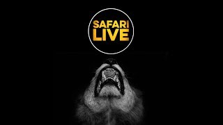 Download safariLIVE - Sunrise Safari - April 21, 2018 Video