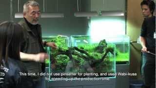 Download TAKASHI AMANO LAYOUT SEMINAR A 90cm aquarium tank . 2012.02.21 Video