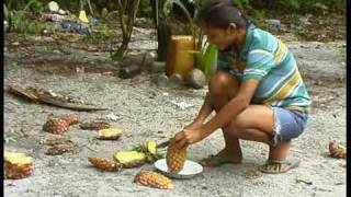 Download NATRAJTV INDIAN VILLAGE MATTA SURINAM Arowakken tribe Eco tourism Video