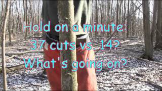 Download Why an angled back cut is dangerous and unecessary when hinge cutting a tree Video