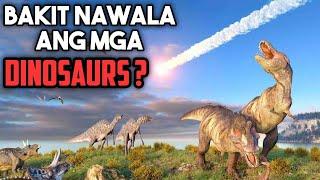 Download ANG KASAYSAYAN NG MGA DINOSAURS | Historya Video