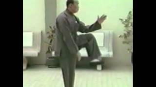 Download Forms by Grandmaster Huang Sheng Shyan (Master Huang Xingxian) Video