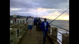 Download South Coast Fishing: Margate pier Video