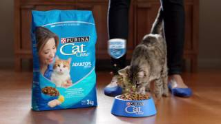 Download PURINA® CAT CHOW® con Defense Plus Video