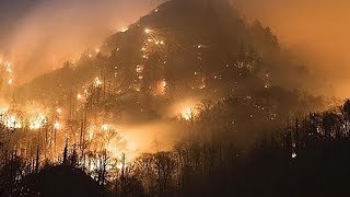 Download Tennessee Wildfires Deathtoll Continues To Climb Video