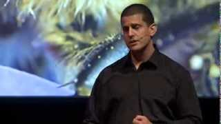 Download Life inside the beehive: Mat Welch at TEDxPerth Video