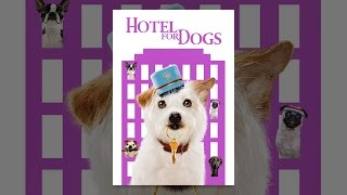 Download Hotel for Dogs Video
