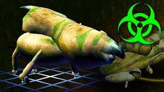 Download Forcing Dinosaur Evolution Using Massive Amounts Of Radiation in Species Video