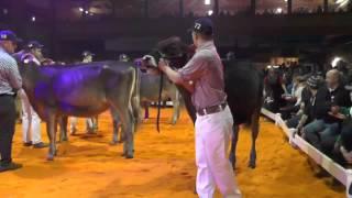 Download GP von Sargans16 Auswahl Championwahl Video