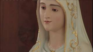 Download Daily Catholic Mass - 2016-12-05 - Fr. Miguel Video