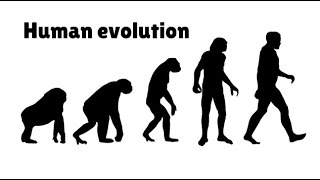 Download Timeline of Human Evolution Video