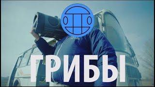 Download Грибы - Тает Лёд Video
