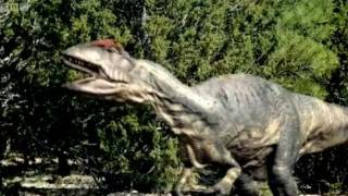 Download Big Al's Mating Call | Walking With Dinosaurs | BBC Video