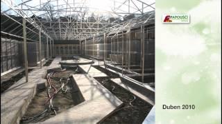 Download Papouščí zoo Bošovice - prohlídka zahradou Video