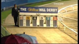 Download Greyhound Derby Final 2010 Video