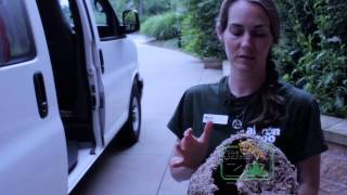 Download What is a Zoo Education Specialist? Video