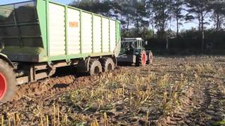 Download Maishäckseln 2012 mit Fendt 615 Video