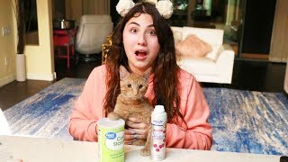 Download MY CATS CHOOSE MY SLIME INGREDIENTS! we made a new slime! Video