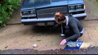 Download Rabid cat attacks woman, kids in Spring Hill Video