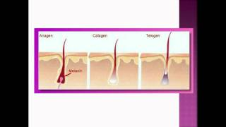 Download Before You Spend Money on Laser Hair Removal.... watch this video! Video