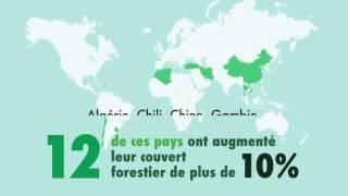 Download Situation des forêts du monde 2016 Video