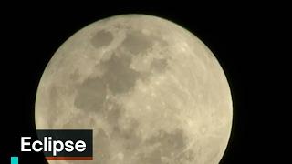 Download Eclipse - Fenómeno Natural - Denise Maerker 10 en punto Video