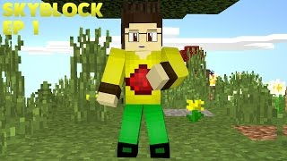 Download Pertualangan SkyBlock Dimulai - MCPE SkyBlock Indonesia #1 Video