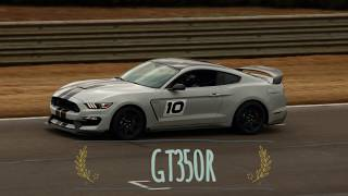 Download ZR1 hunting in a GT350R Pure beautiful noise! Video