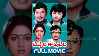 Download Pachani Kapuram Full Movie | Krishna, Sridevi, Kongaru Jagayya | Rama Rao Tatineni | Chakravarthy Video