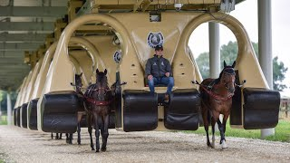 Download Horse Training Machine Is Like Rollercoaster Video