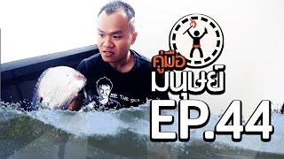 Download คู่มือมนุษย์ EP.44 วิธีเอาตัวรอดจากน้ำท่วม Video