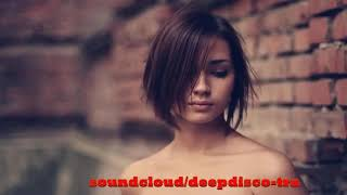 Download The Best Of Vocal Deep House Nu Disco 2013 (2 Hour Mixed By Zeni N) Video