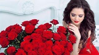 Download Podvinčani - Neka ruže crvene Video