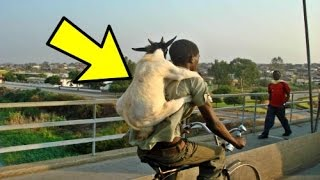 Download 25 Craziest Photos Taken in Africa Video